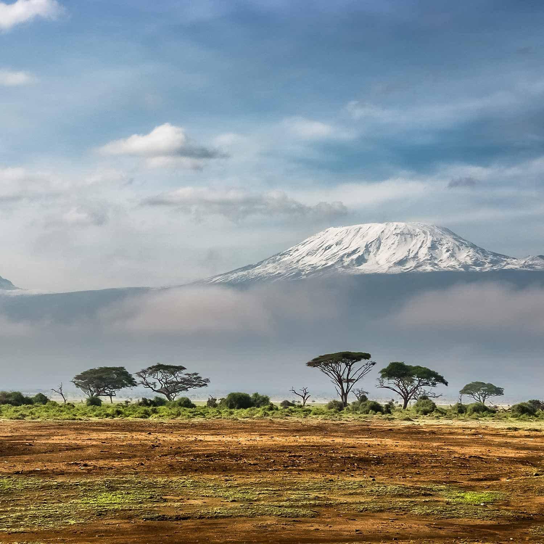 kilimanjaro-1500